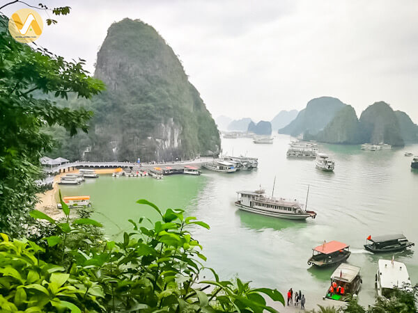 amazing-vietnam-7-days-halong-bay